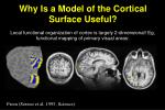 why is a model of the cortical surface useful