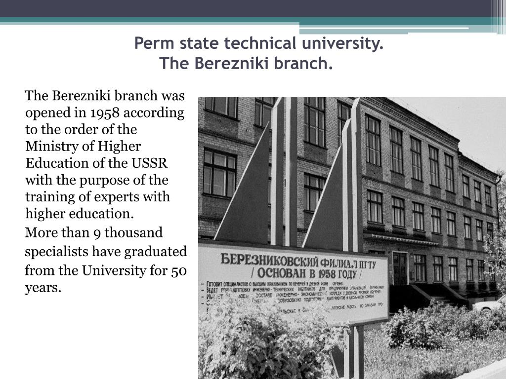 perm state technical university the berezniki branch l.