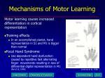 mechanisms of motor learning