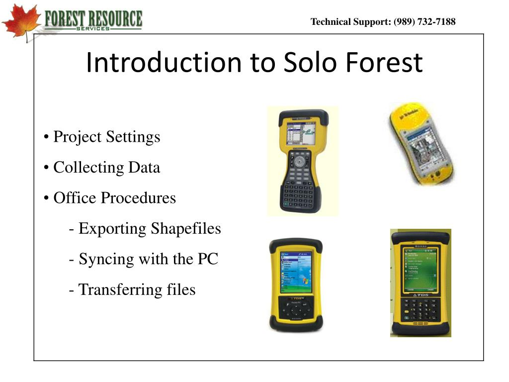 introduction to solo forest l.