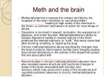meth and the brain