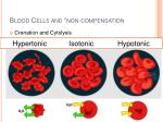 blood cells and non compensation