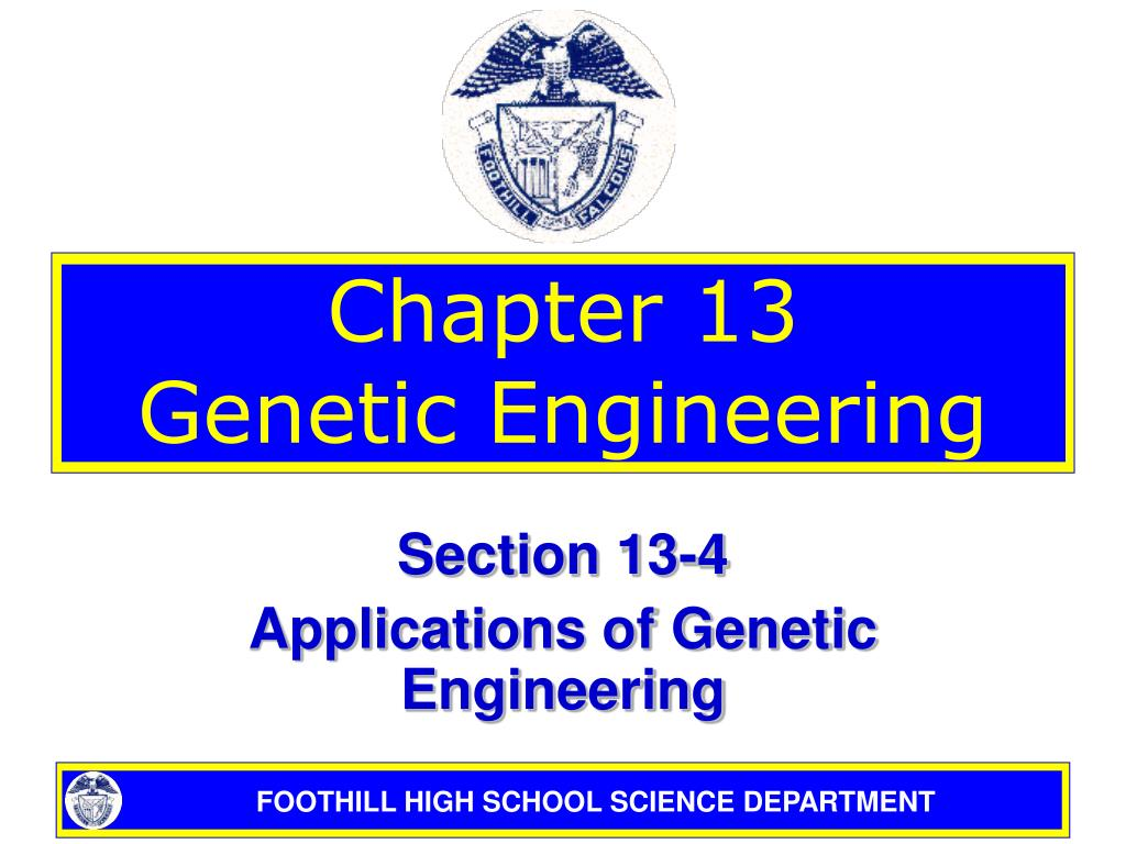 chapter 13 genetic engineering l.