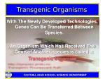 transgenic organisms3