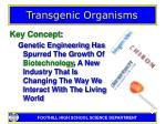 transgenic organisms4