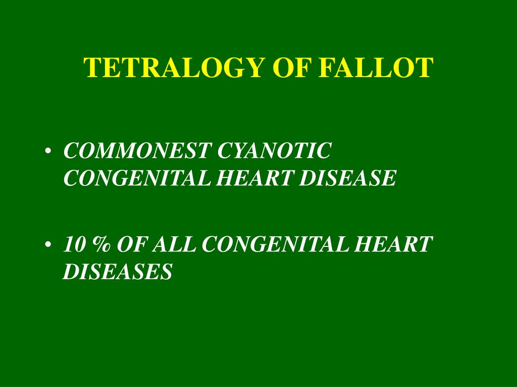 tetralogy of fallot l.