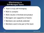 effectiveness in self managed teams