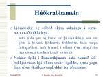 h krabbamein78