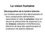 la vision humaine8