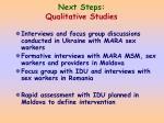 next steps qualitative studies