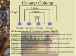 counter column