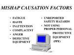 mishap causation factors