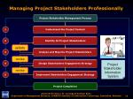 managing project stakeholders professionally