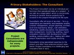 primary stakeholders the consultant