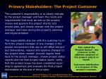 primary stakeholders the project customer