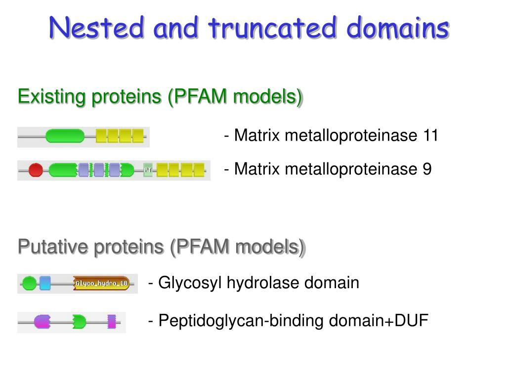 Nested and truncated domains