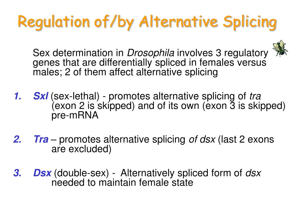 Regulation of/by Alternative Splicing
