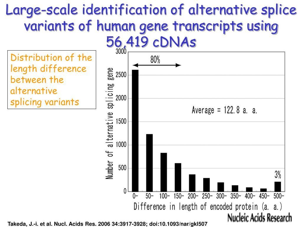 Large-scale identification of alternative splic