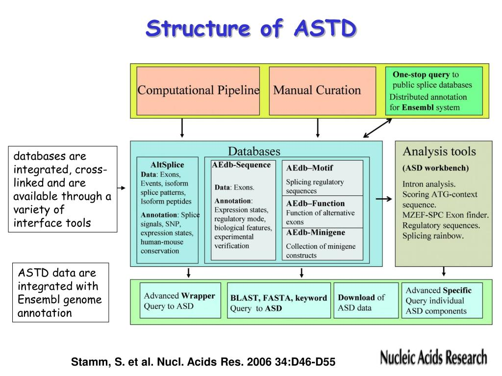 Structure of ASTD