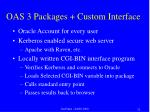oas 3 packages custom interface