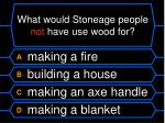 what would stoneage people not have use wood for