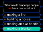 what would stoneage people not have use wood for36