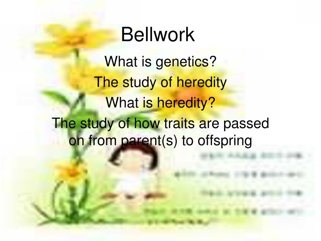 bellwork l.