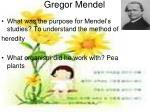 gregor mendel4