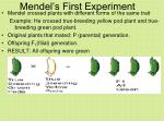 mendel s first experiment
