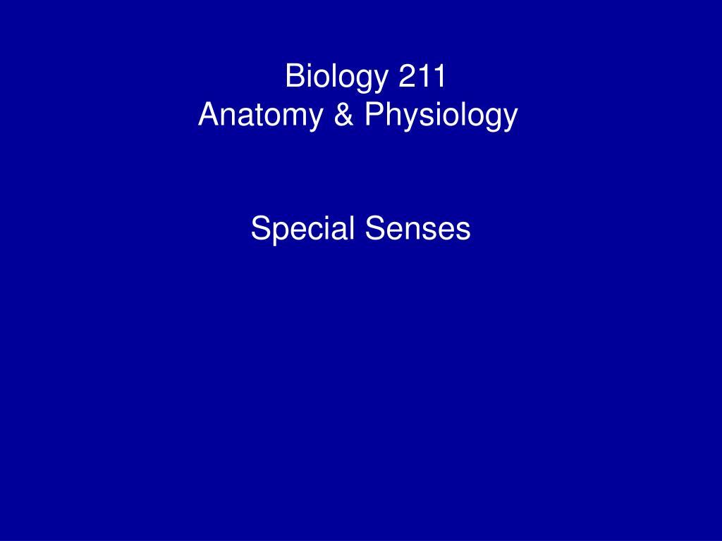 biology 211 anatomy physiology i l.
