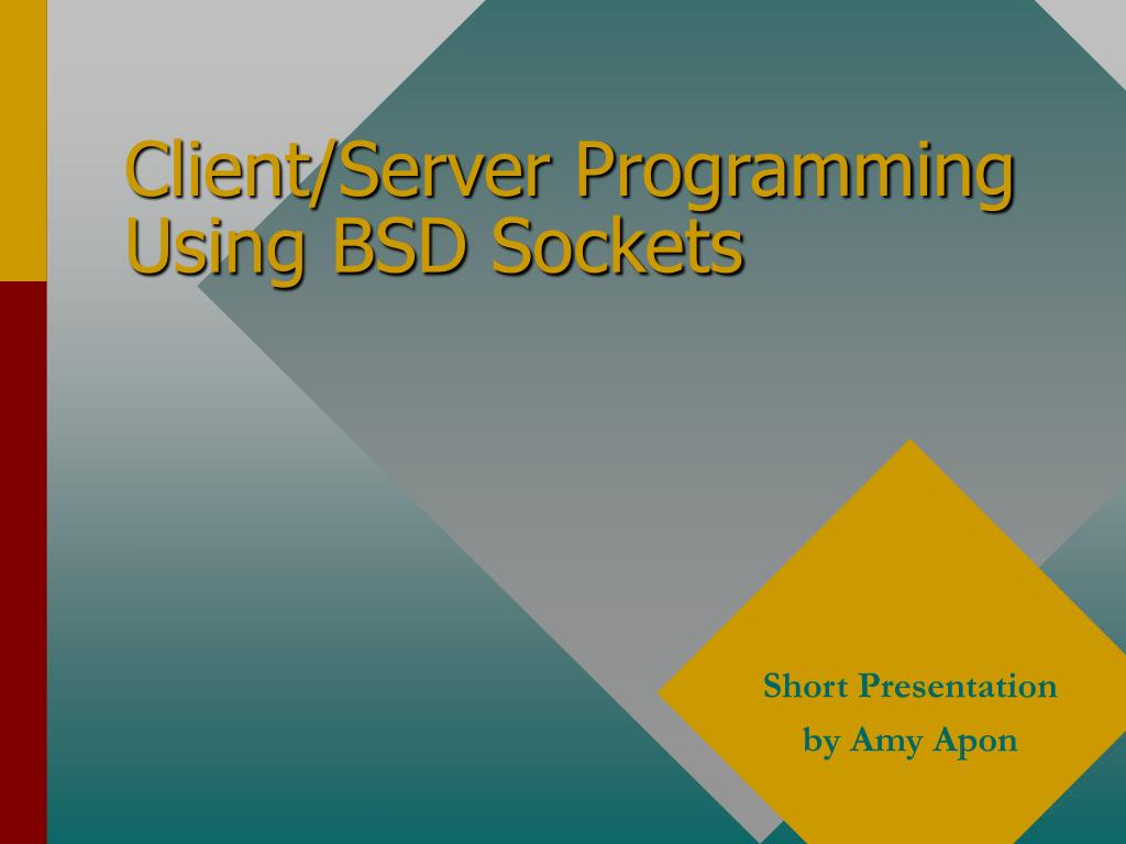 client server programming using bsd sockets l.