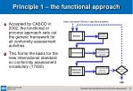 principle 1 the functional approach