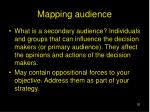 mapping audience20