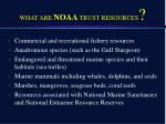 what are noaa trust resources
