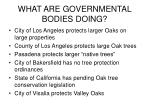 what are governmental bodies doing