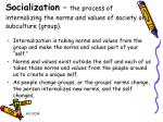 socialization the process of internalizing the norms and values of society or subculture group