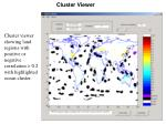 cluster viewer