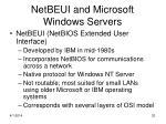 netbeui and microsoft windows servers