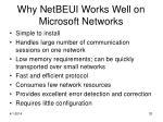 why netbeui works well on microsoft networks