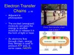 electron transfer chains