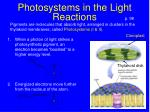 photosystems in the light reactions