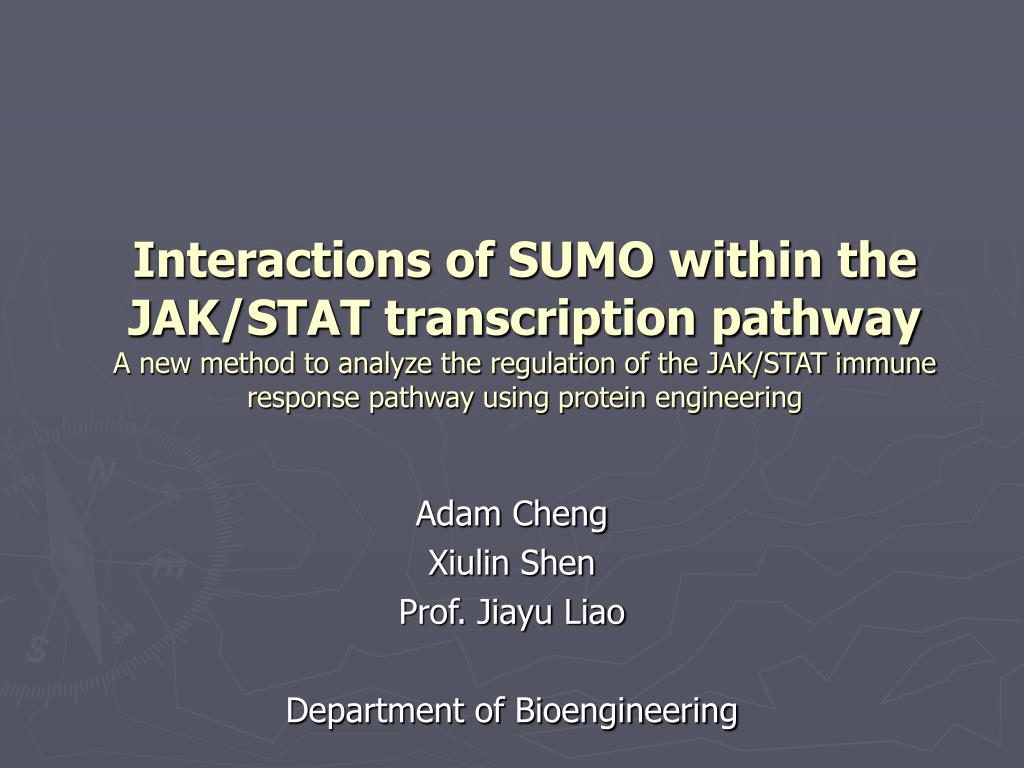 adam cheng xiulin shen prof jiayu liao department of bioengineering l.