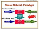neural network paradigm