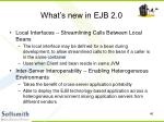what s new in ejb 2 046