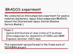brados experiment