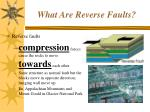 what are reverse faults