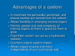 advantages of a coelom