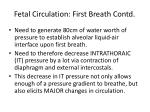 fetal circulation first breath contd