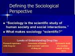defining the sociological perspective