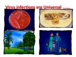 virus infections are universal